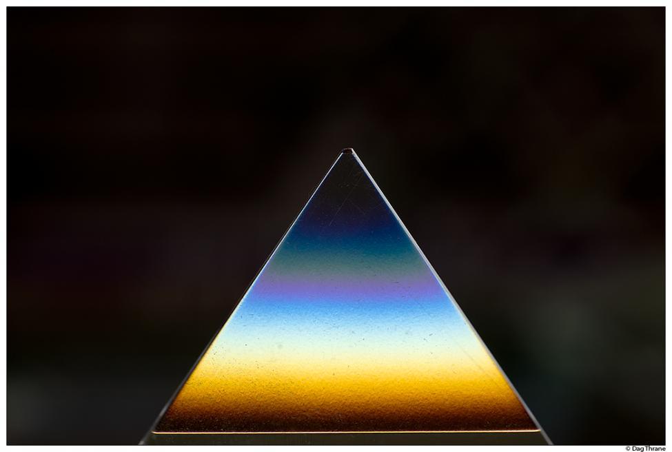 218_DT40265-prisme-web.jpg