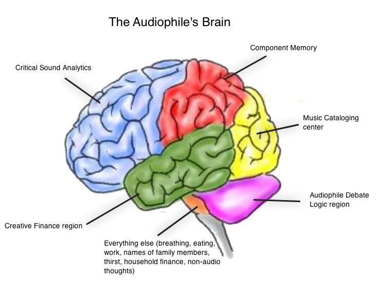 Navn:      aphile-brain.jpg Visninger: 481 Størrelse: 204.0 Kb