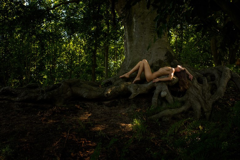 Navn:      Artistic-Nude-Nature-Artwork-by-Photographer-dkarts-FullSize.jpg Visninger: 1315 Størrelse: 118.0 Kb