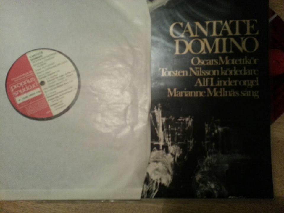 Cantate Domino.jpg