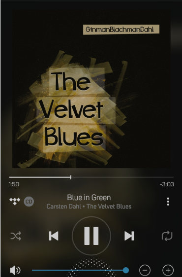 carsten dahl- the velvet blues.PNG