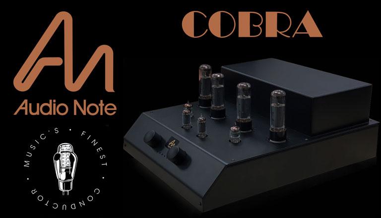 Cobra_2_lite.jpg