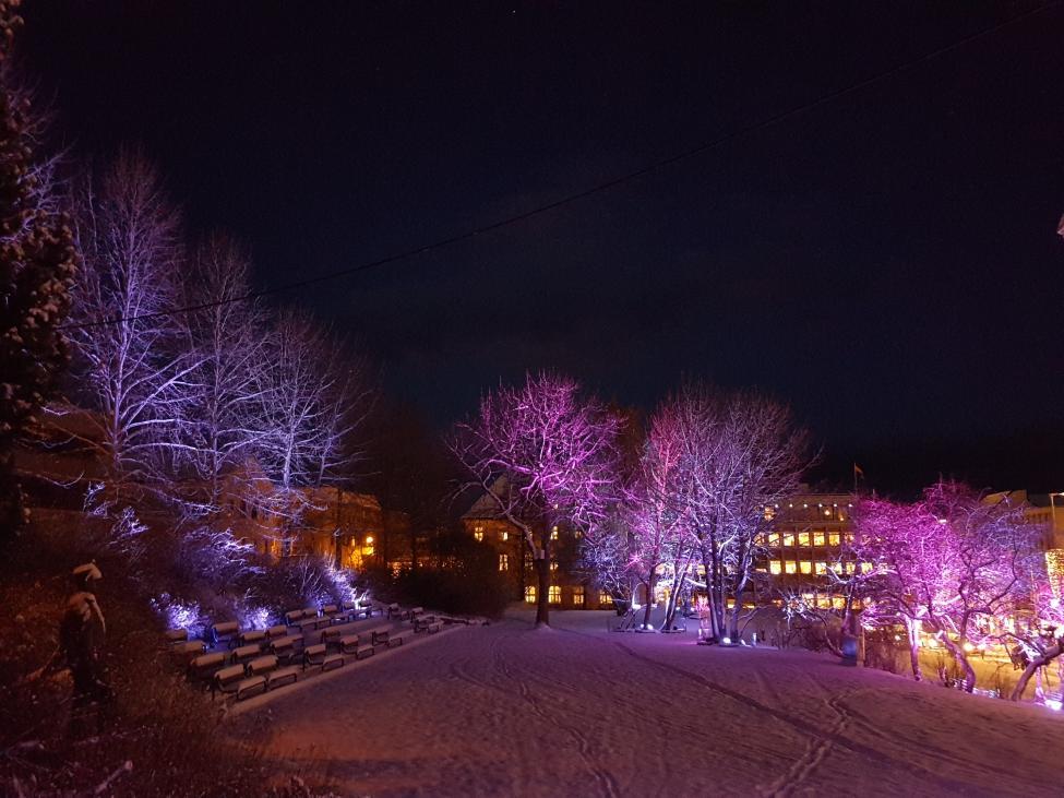 Navn:      Generalhagen - Harstad - Julestemning.jpg Visninger: 287 Størrelse: 96.4 Kb