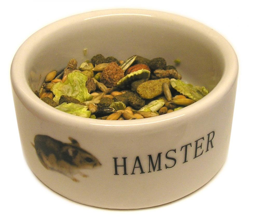 Navn:      hamster-food-bowl.jpg Visninger: 419 Størrelse: 71.9 Kb