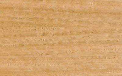 Navn:      Harbeth eucalyptus.jpg Visninger: 1057 Størrelse: 52.3 Kb