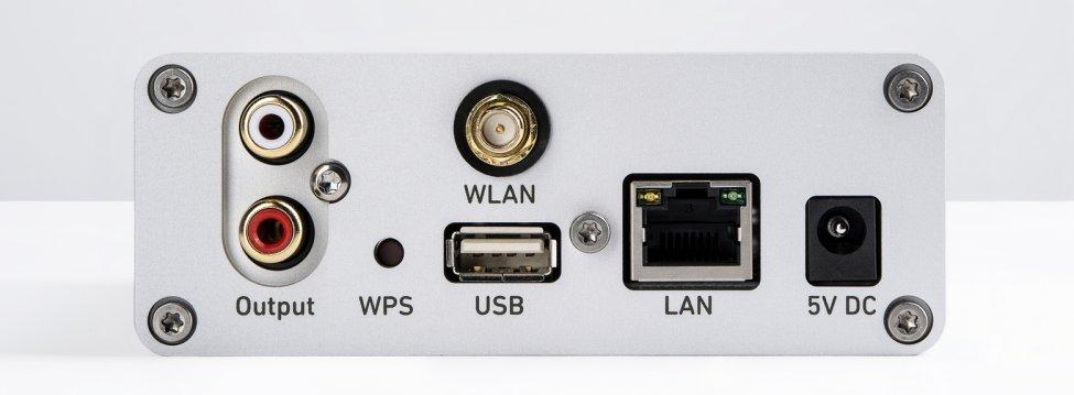LimetreeNetwork_Back-1.jpg