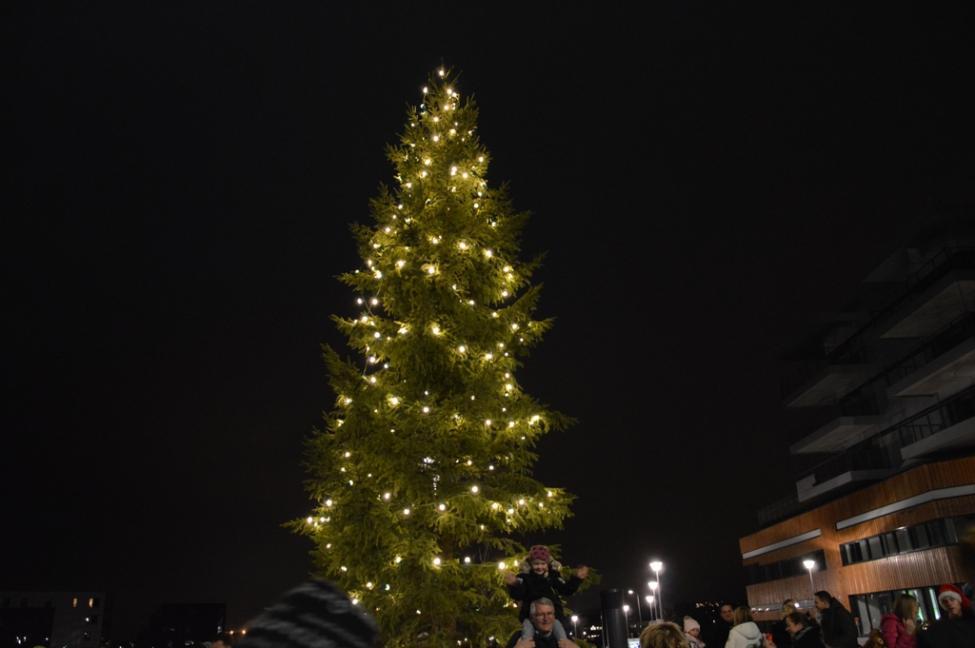 Lysene på treet tennes komprimert (6).jpg