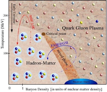 quark gluon.jpg