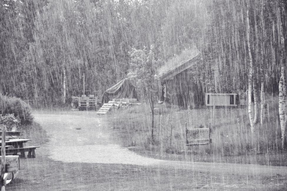 Telemark i regn_.jpg