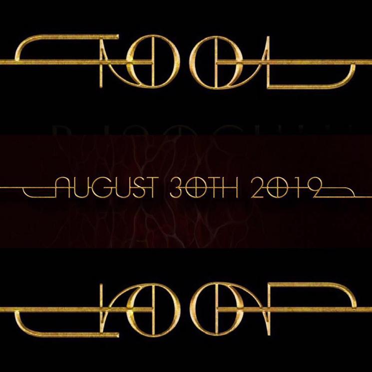 Navn:      tool_new_logo_gold_2019.png Visninger: 2058 Størrelse: 255.1 Kb